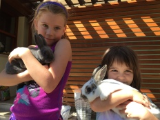 Bunny Loves!